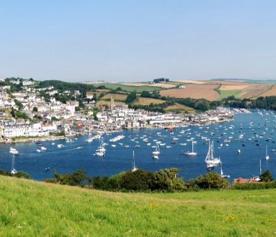 WHAT'S ON SALCOMBE image