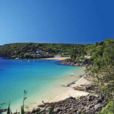 Experience Salcombe and surrounding villages 2017 image