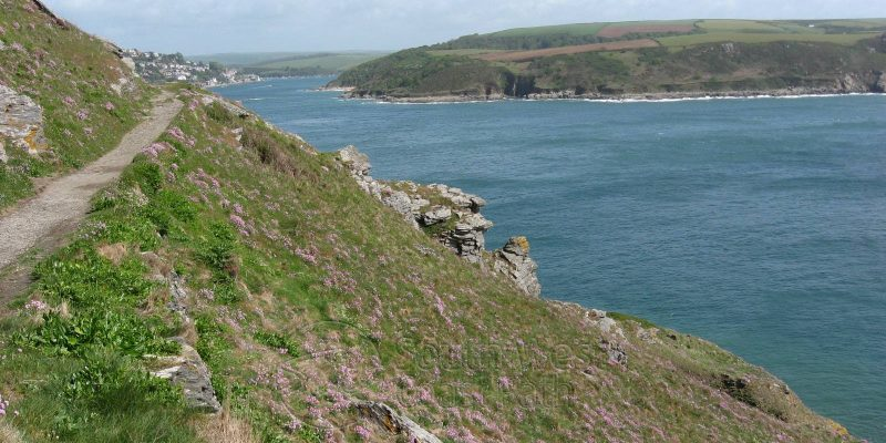 South West Coast Path is Britain's best-loved walk! image