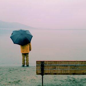 Rain Salcombe